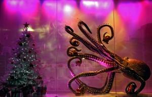 aquarium-sansebasitanshops