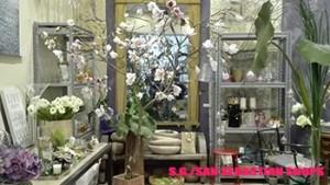 villa_flores_tienda_sansebastianshops